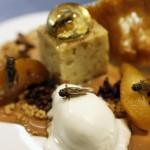 Putukad luksusköögis - gurmee-, gurmeetooted putukate köögis