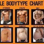Fitnesstipp, welcher Körperbau ist der schönste – Traumkörper Workout