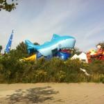 Die Haie sind los