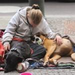 Obdachlos wegen Tierliebe